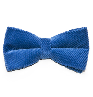 Rugged Terrain Collection: Perennial Blue Bow Tie