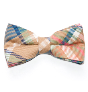 Rugged Terrain: Connery Bow Tie