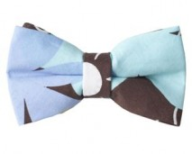 2013 Spring Women's Brown, Blue Bow Tie