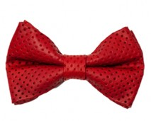 Shop Page - Boys Red Leather Bow Tie_edited-1