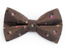 Saldana - Women's Bow Tie_shop