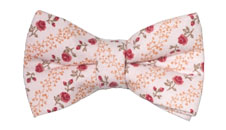Feature Panel - Jessica Pink Bow Tie
